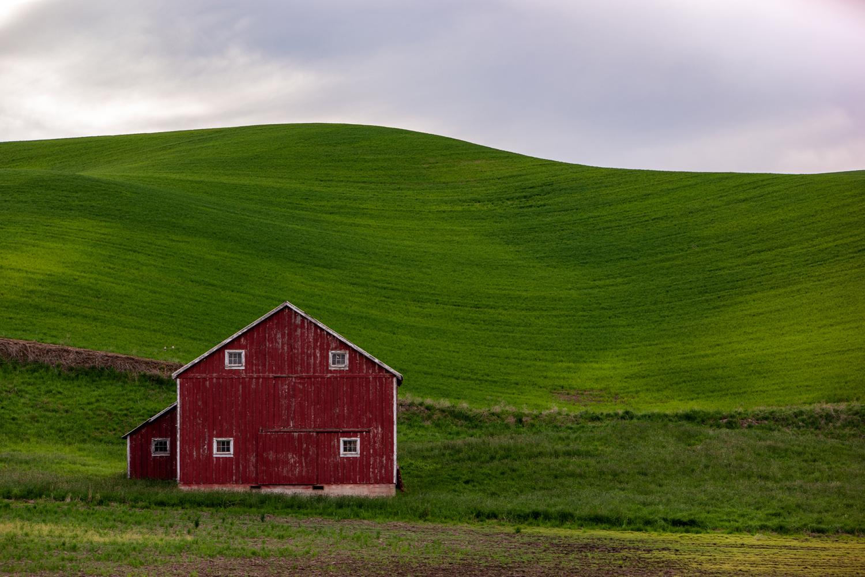 Wasim Muklashy Photography_Tesla Trip_Columbia River Gorge_Oregon_Washington_Palouse_110.jpg