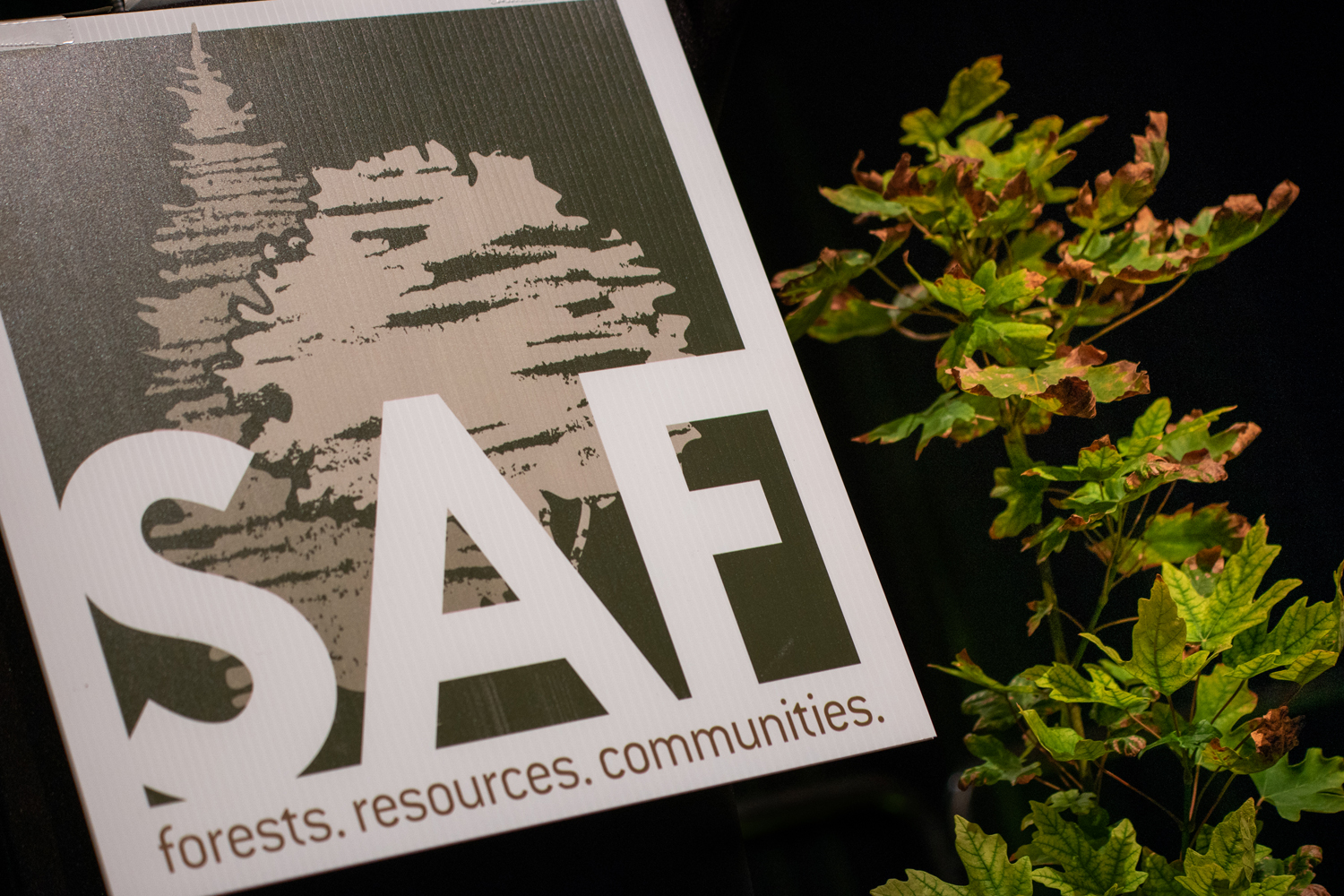 Wasim Muklashy Photography_-SAM_2647_Society of American Foresters National Convention_202.jpg