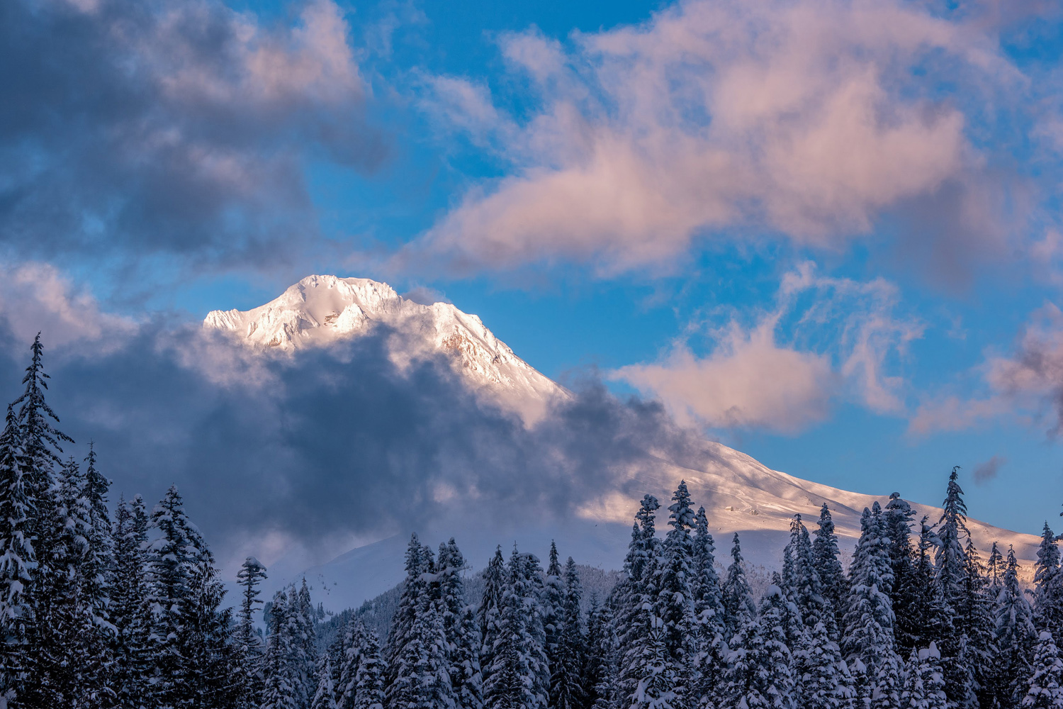 Wasim Muklashy Photography_Wasim of Nazareth_Mount Hood_Oregon_105 copy.jpg
