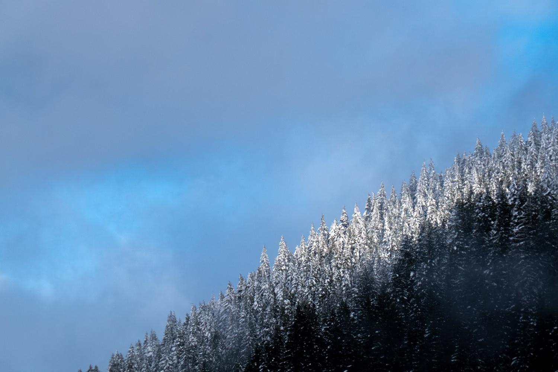 Wasim Muklashy Photography_Mount Hood_Oregon_102.jpg
