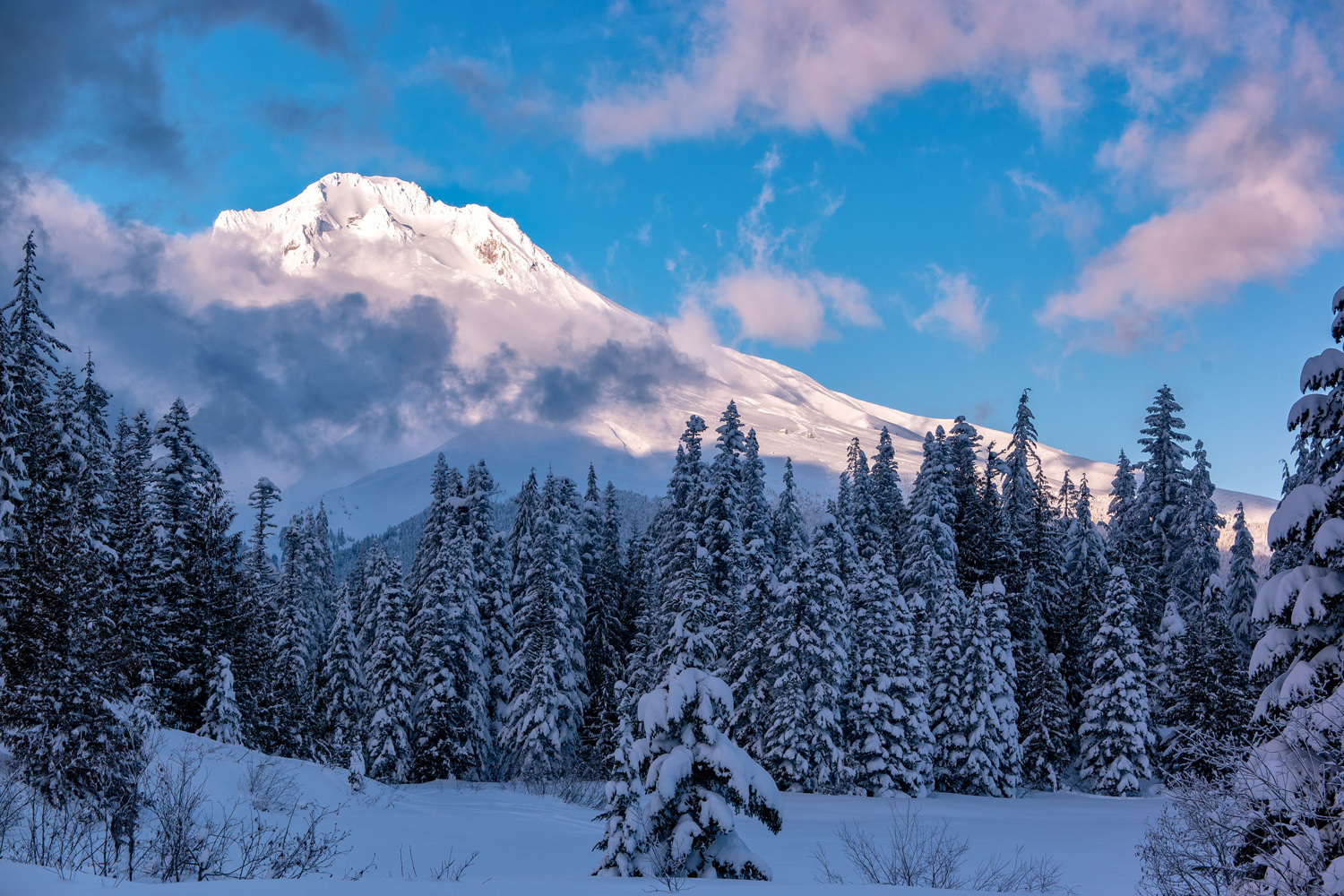 Wasim Muklashy Photography_Wasim of Nazareth_Mount Hood_Oregon_103.jpg