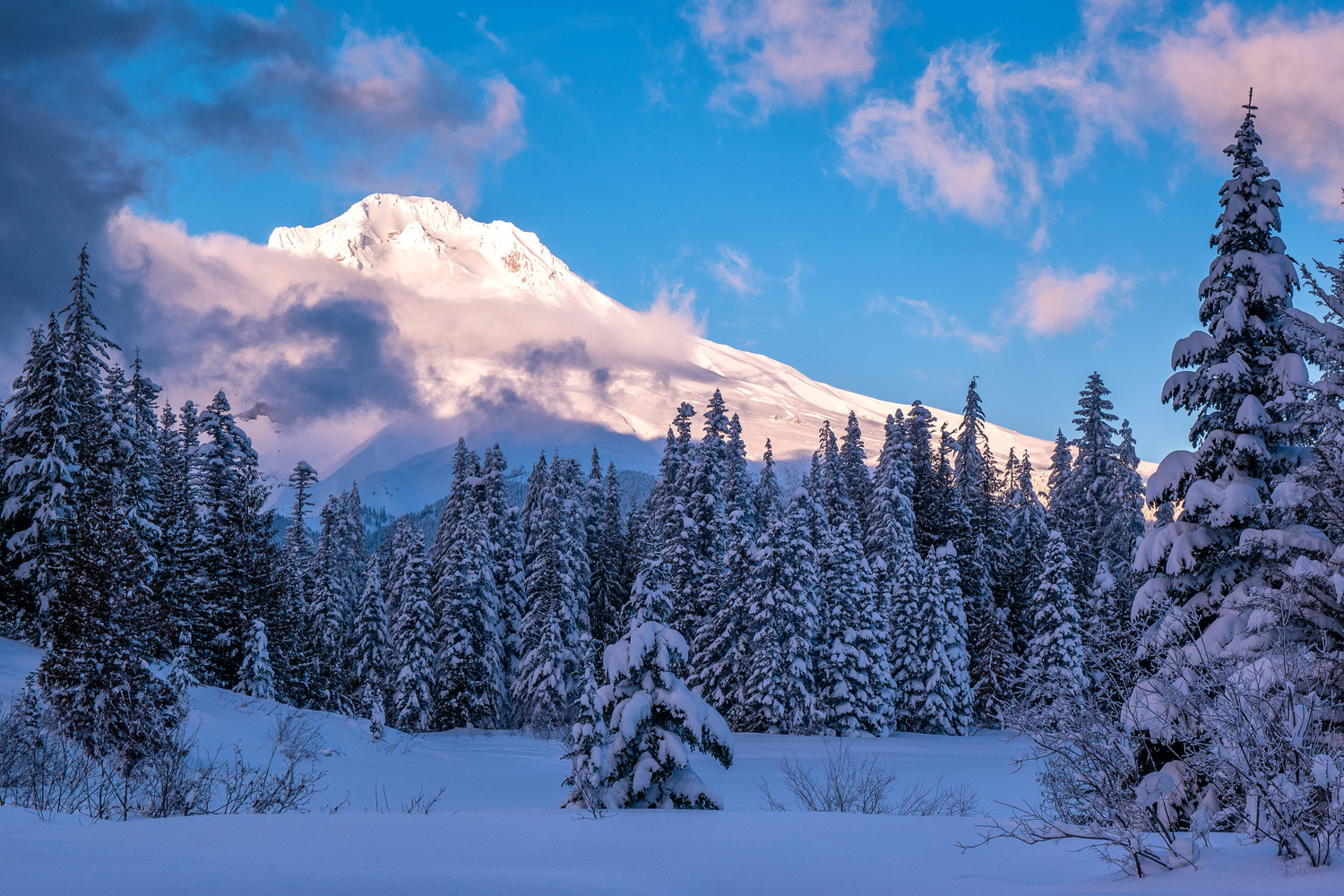 Wasim Muklashy Photography_Wasim of Nazareth_Mount Hood_Oregon_125.jpg