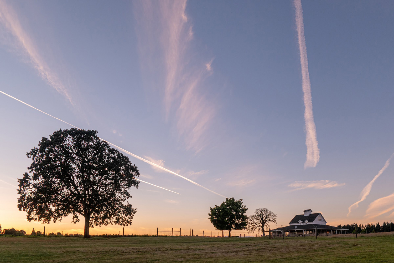 Wasim Muklashy Photography_Oakwood Gardens_Hillsboro_Oregon_119.jpg