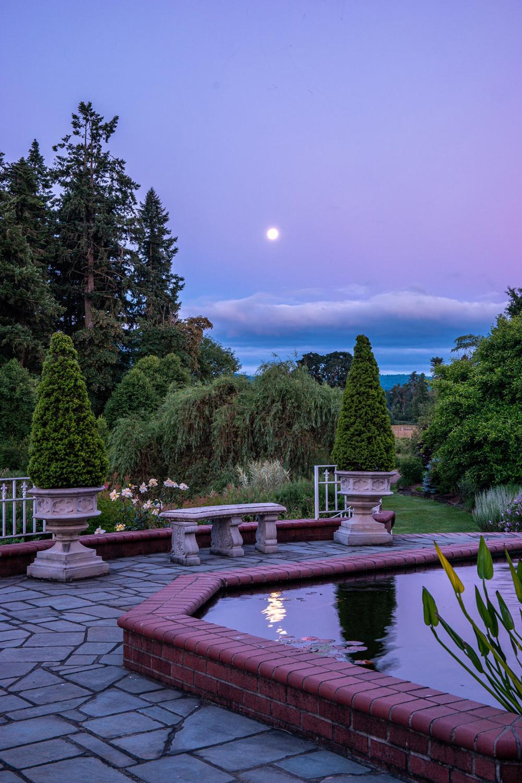 Wasim Muklashy Photography_Oakwood Gardens_Hillsboro_Oregon_132.jpg