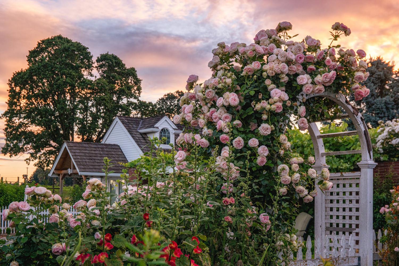Wasim Muklashy Photography_Oakwood Gardens_Hillsboro_Oregon_141.jpg