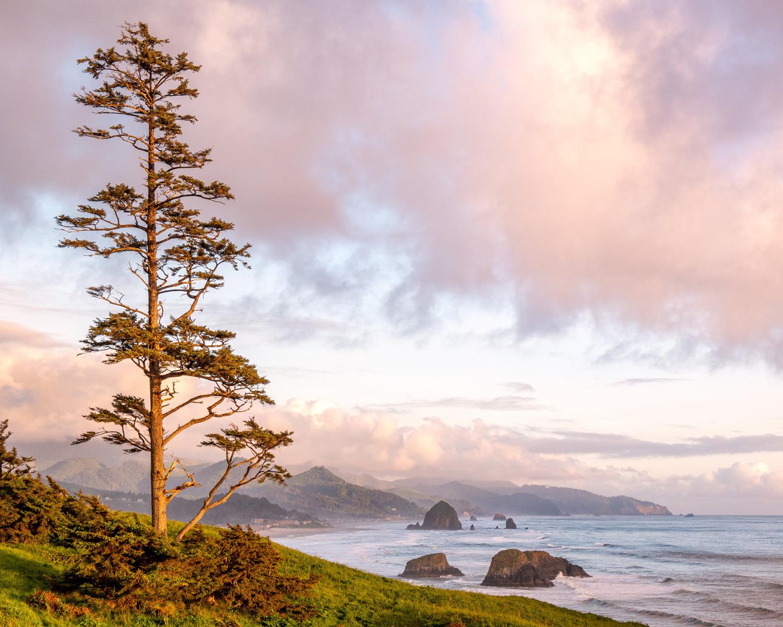 Wasim Muklashy Photography_Ecola State Park_Beach_Oregon_104.jpg