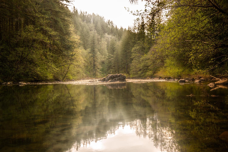 Wasim Muklashy Photography_Washington State_Moulton Falls Regional Park_102.jpg