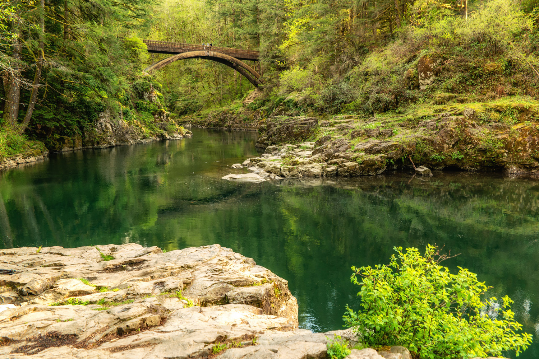 Wasim Muklashy Photography_Washington State_Moulton Falls Regional Park_108.jpg