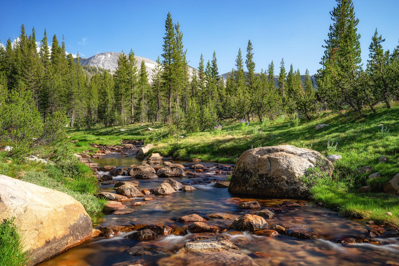 Wasim Muklashy Photography_Sierra Nevada Mountains_Sierras_Tuolumne Meadows_Yosemite National Park_California_110.jpg