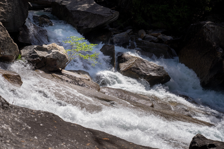 Wasim Muklashy Photography_Sierra Nevada Mountains_Sierras_Kings Canyon Sequoia National Park_California_106.jpg