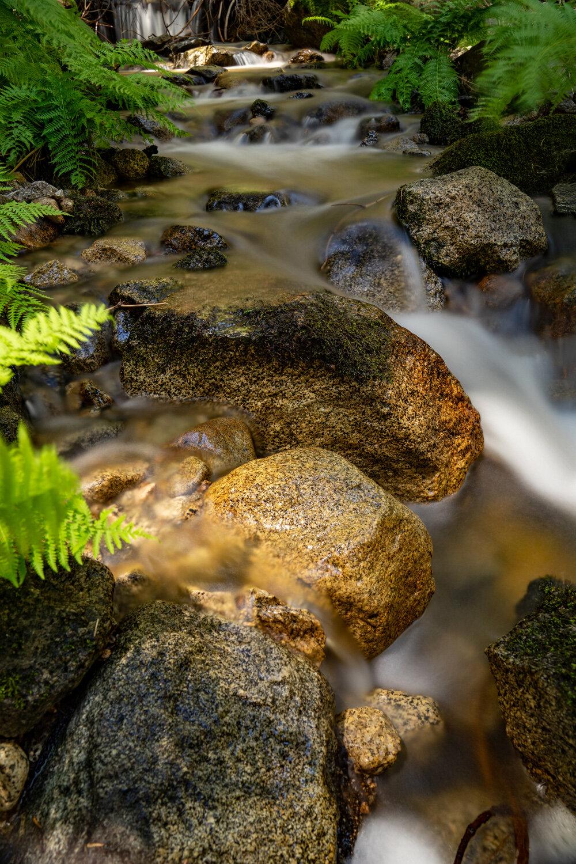 Wasim Muklashy Photography_Sierra Nevada Mountains_Sierras_Kings Canyon Sequoia National Park_California_123.jpg