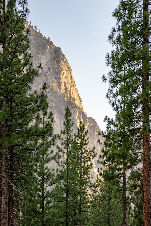 Wasim Muklashy Photography_Sierra Nevada Mountains_Sierras_Kings Canyon Sequoia National Park_California_151.jpg