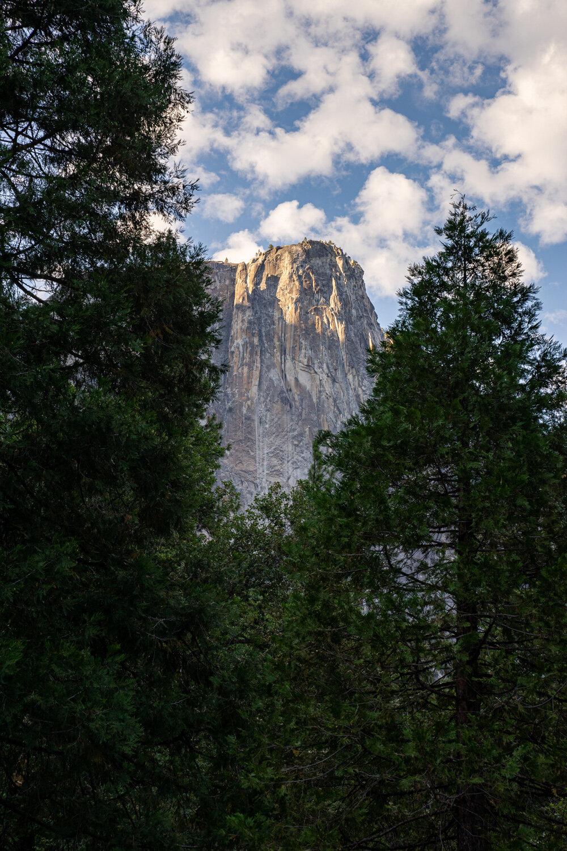 Wasim Muklashy Photography_Sierra Nevada Mountains_Sierras_Tuolumne Meadows_Yosemite National Park_California_102.jpg