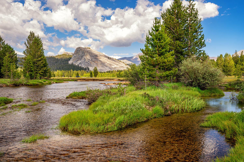 Wasim Muklashy Photography_Sierra Nevada Mountains_Sierras_Tuolumne Meadows_Yosemite National Park_California_105.jpg