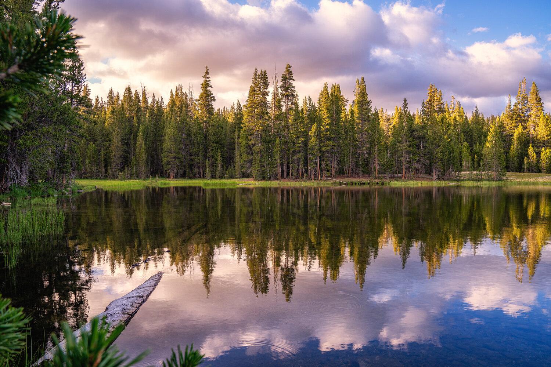 Wasim Muklashy Photography_Sierra Nevada Mountains_Sierras_Tuolumne Meadows_Yosemite National Park_California_113.jpg