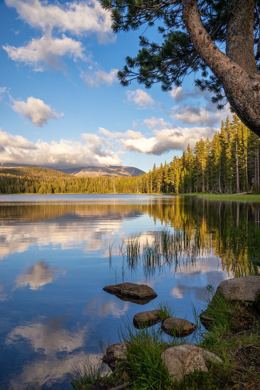 Wasim Muklashy Photography_Sierra Nevada Mountains_Sierras_Tuolumne Meadows_Yosemite National Park_California_115.jpg