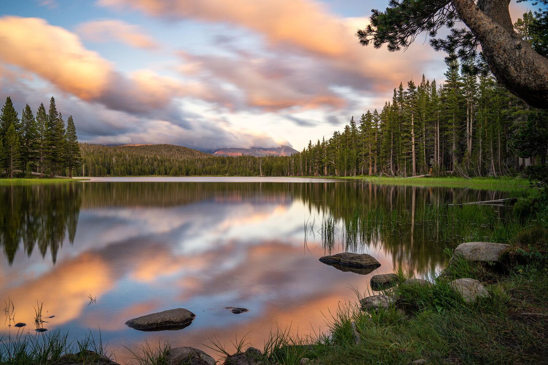 Wasim Muklashy Photography_Sierra Nevada Mountains_Sierras_Tuolumne Meadows_Yosemite National Park_California_119.jpg