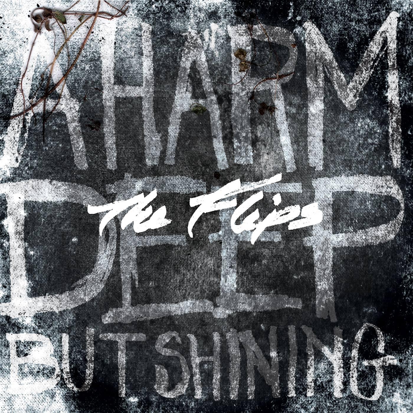 A Harm Deep But Shining  (2013)
