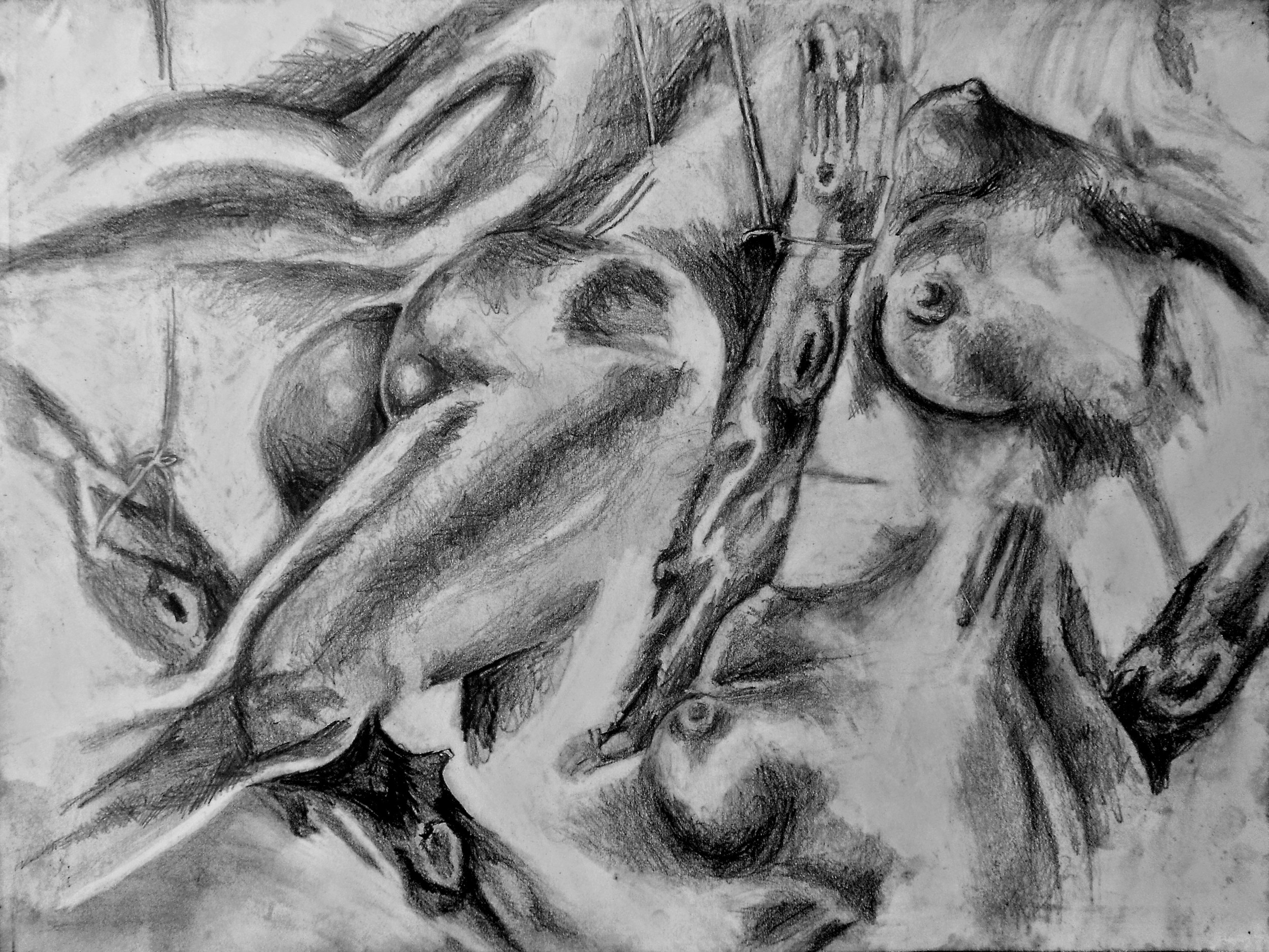 What it initially looked like before - A charcoal sketch of inanimate objects visually arranged by my imagination