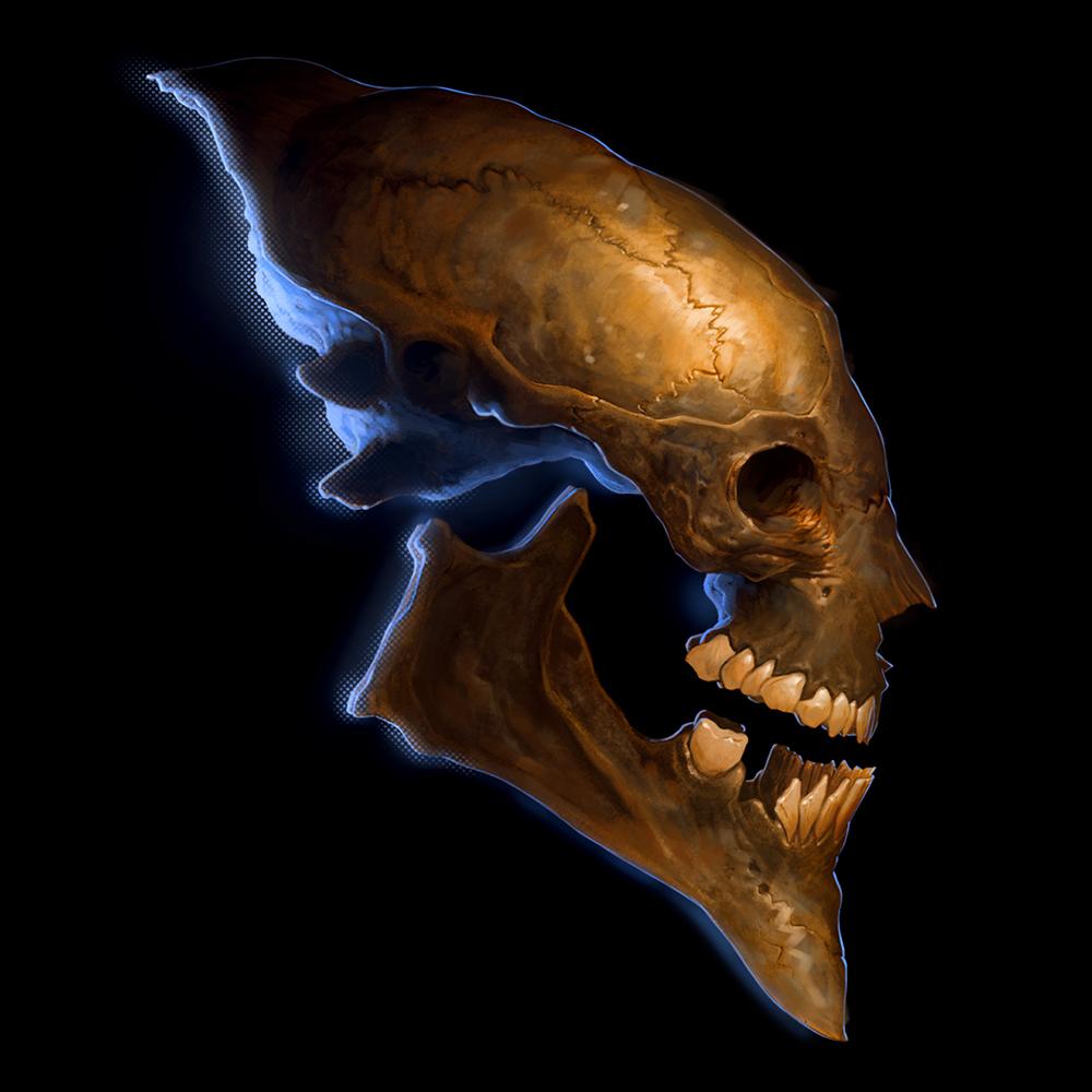 net_skull02.jpg