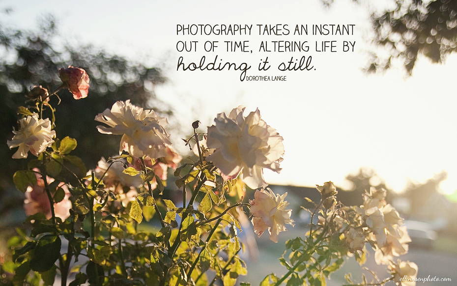 Ellingsen Photography May 2012 Free Desktop Background preview