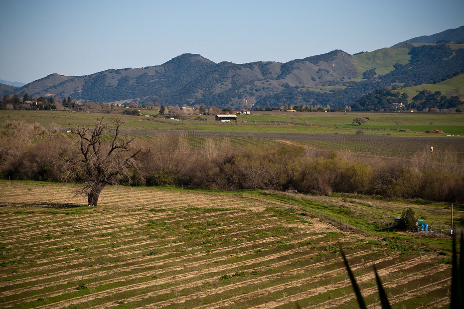 Solvang Day Trip by Ellingsen Photography