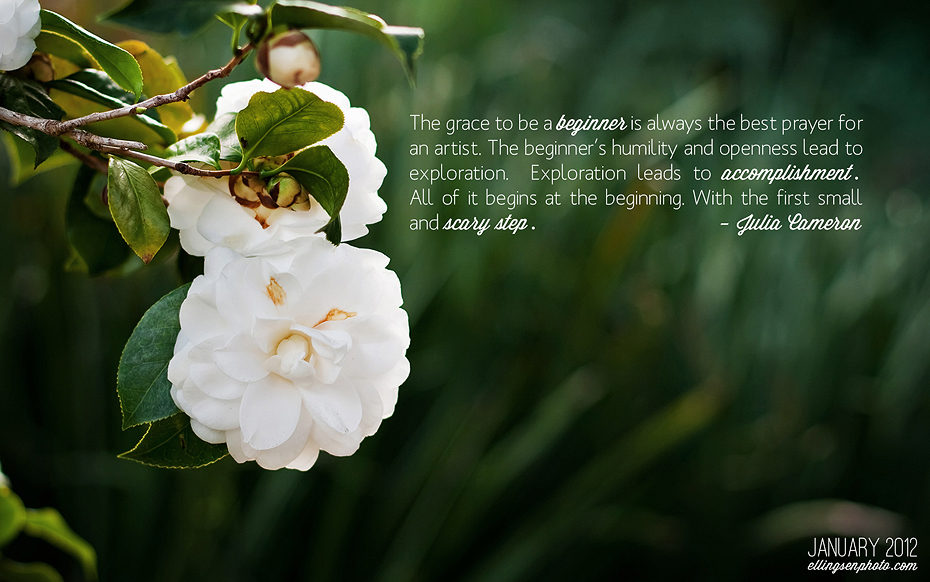 Ellingsen Photograpy January 2012 Desktop Background Freebie-Preview