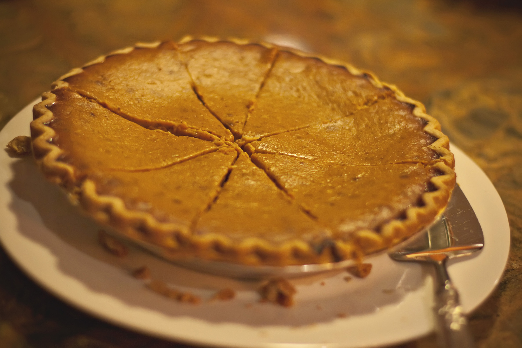 Ellingsen Photography Thanksgiving Pumpkin Pie