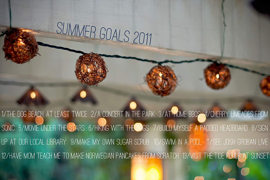 Ellingsen Photography Summer Goals 2011