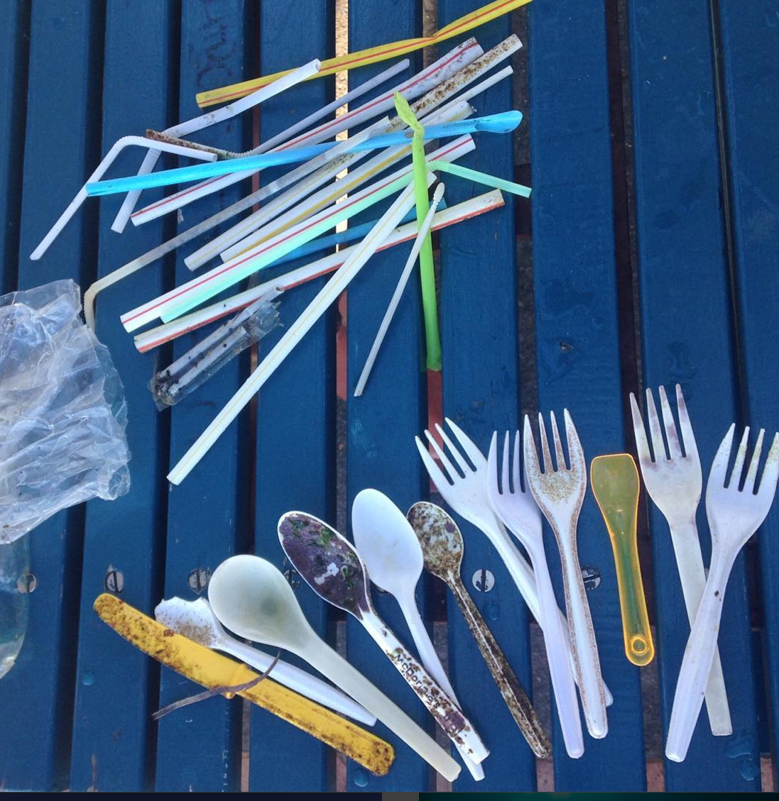 My friend @rosieleaney is a Dive Instructor and Underwater Photographer at Dive Centre Manly. She collected this huge collection of plastic straws and cutlery on a short swim back to the beach after diving at Manly Cover. Ditch the plasic!