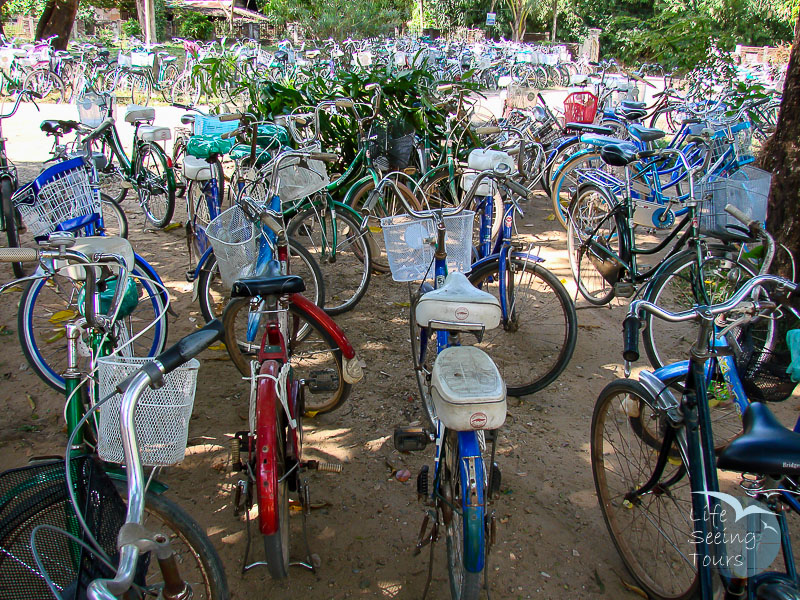 SCHOOL BICYCLES