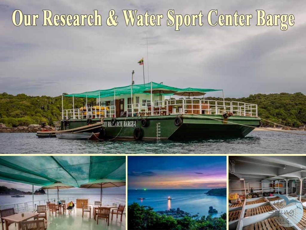 Our Research & Water Sport Center Barge (Medium).jpg