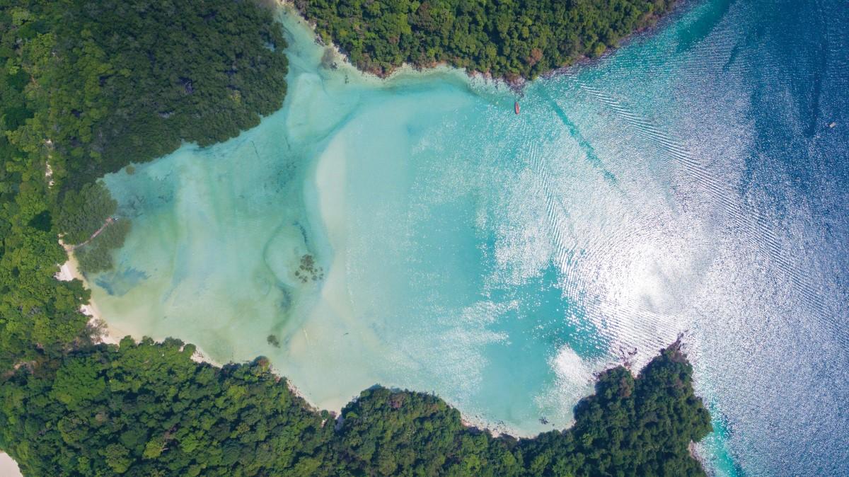 Wa-Ale-mangrove-beach-04 (Custom).jpg