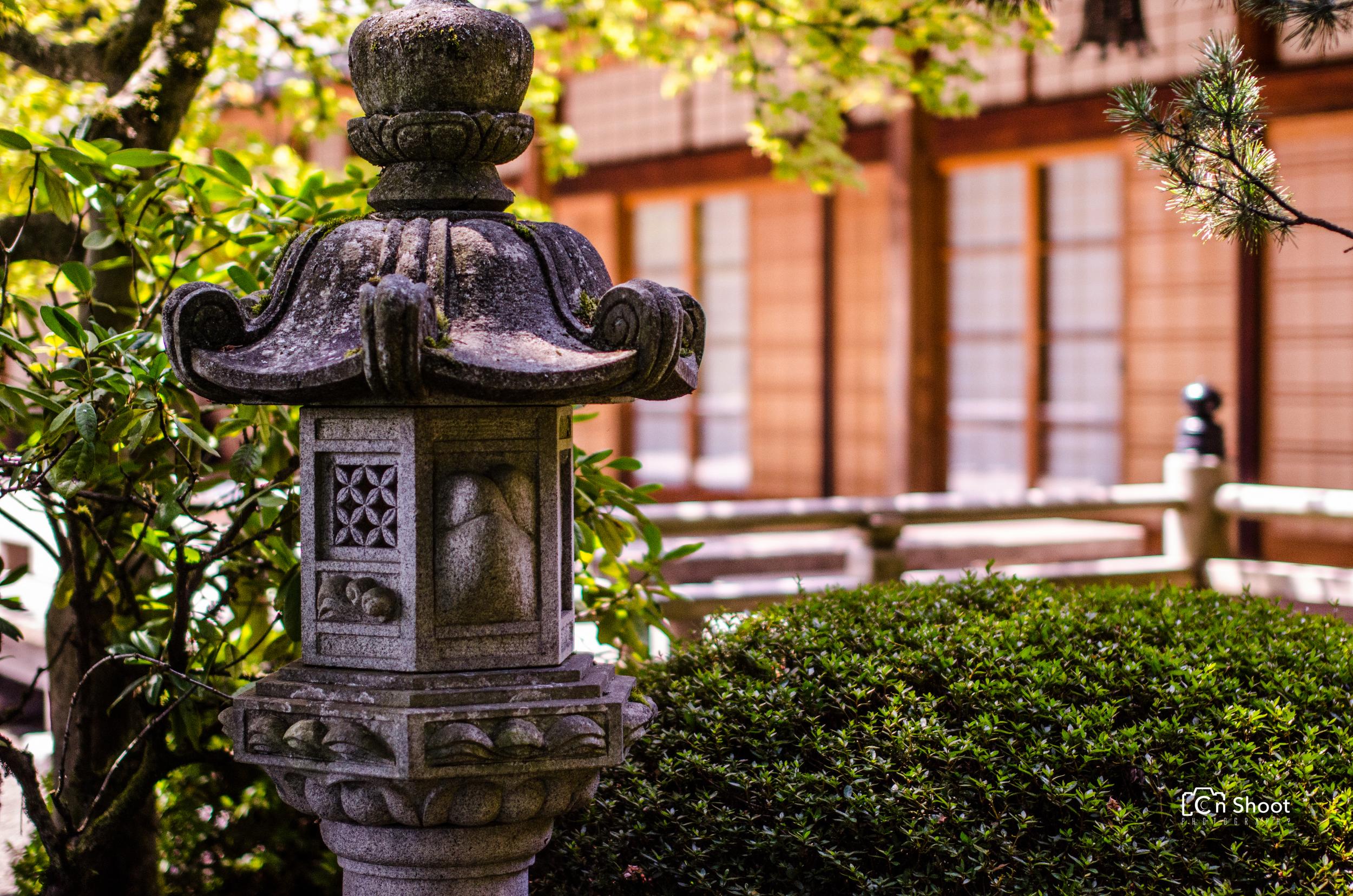 Japanese Garden-3.jpg