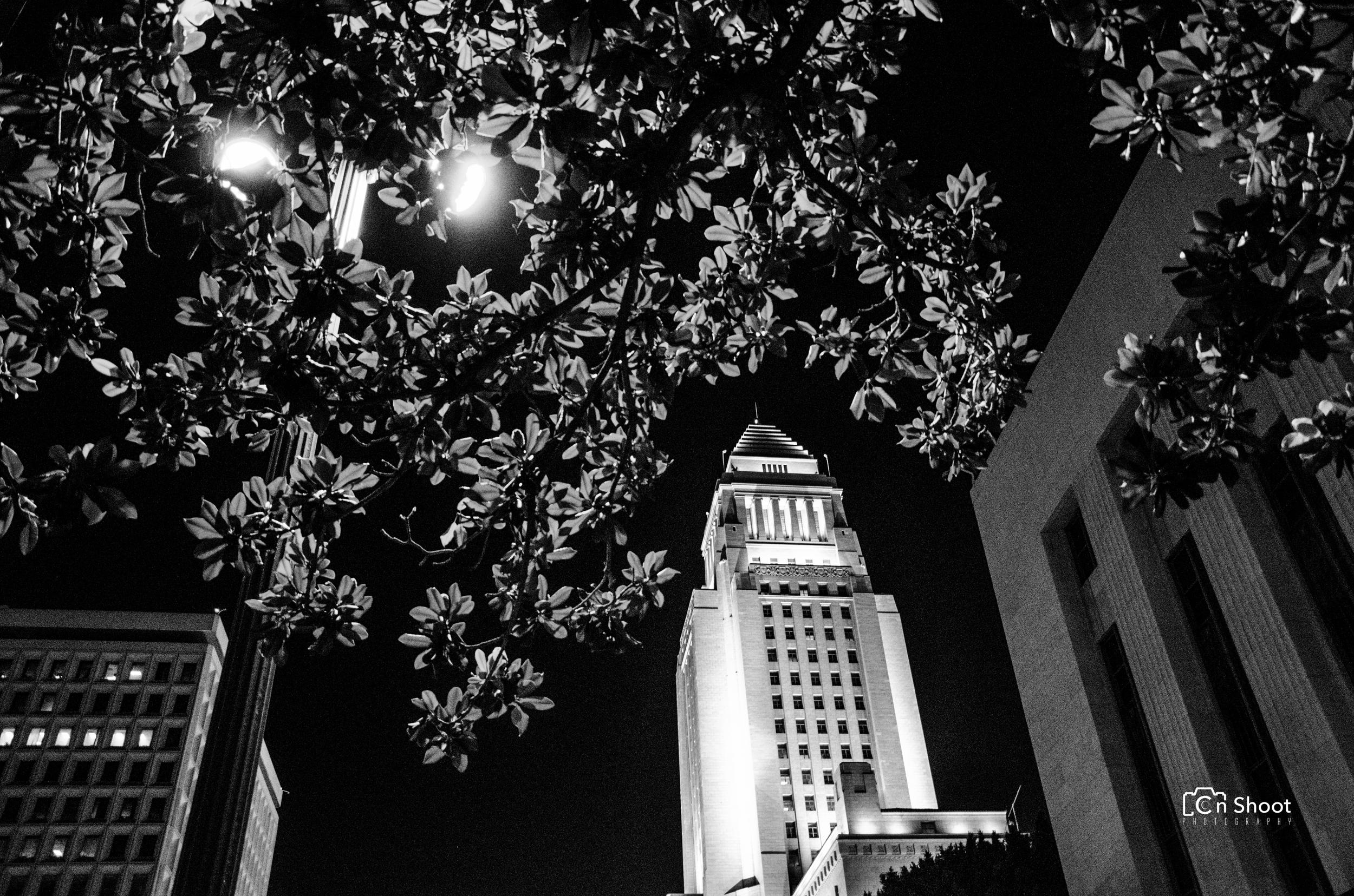 Explore_LA City Hall -4.jpg