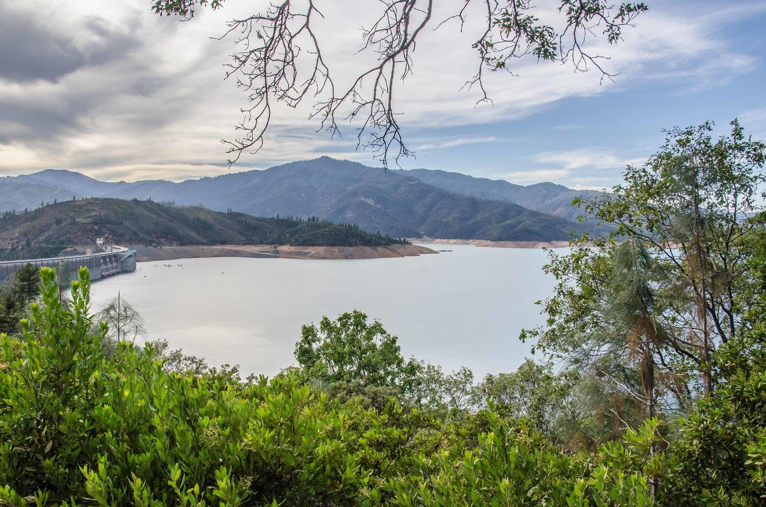 Shasta Lake-1.jpg