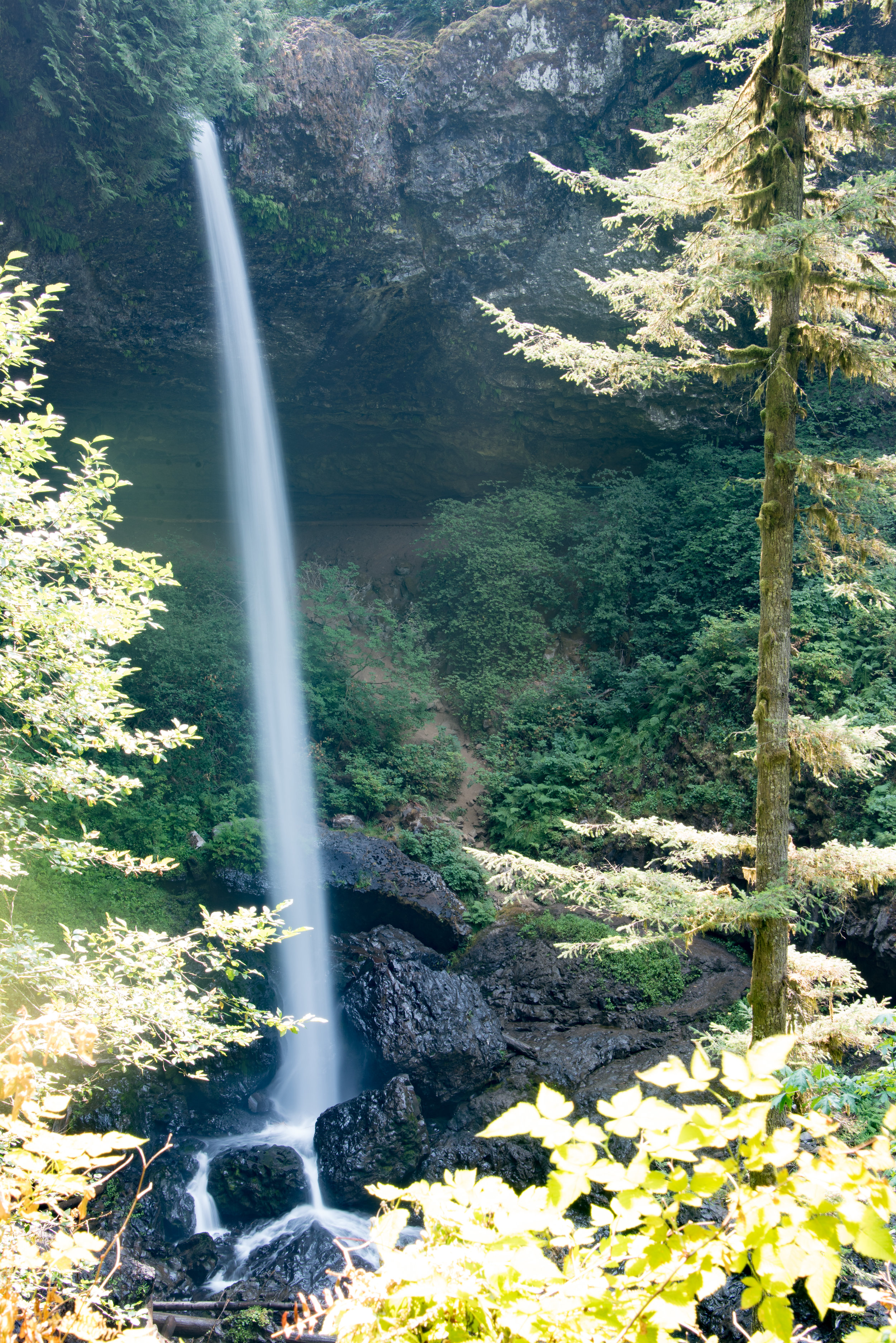 South Falls. ©2017 Images by Design