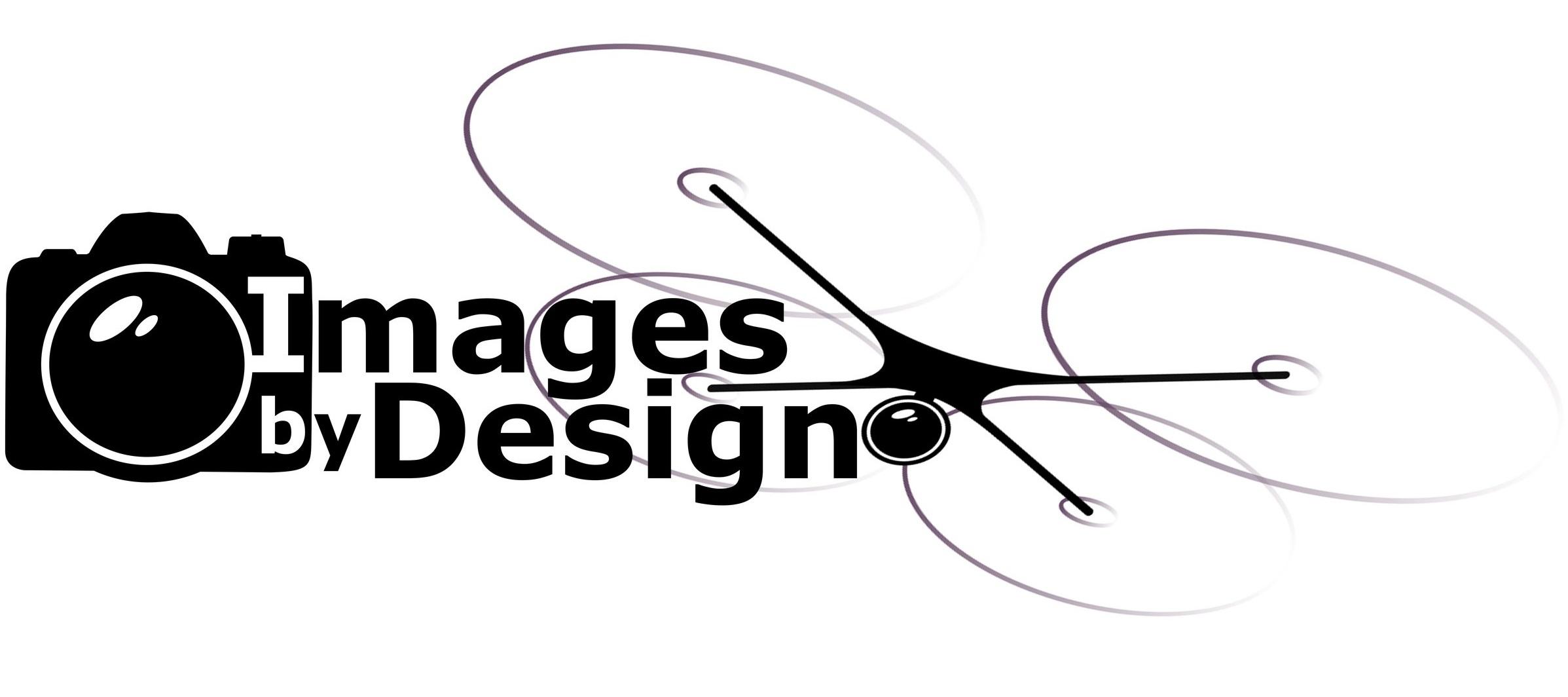 Ibd+Logo+with+Drone.jpg