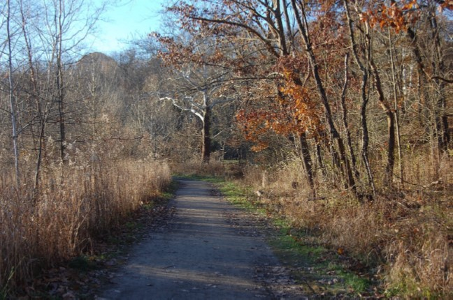 Nine Mile Run Trail