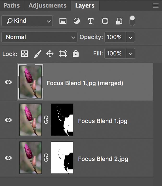Layers Final Merged.jpg