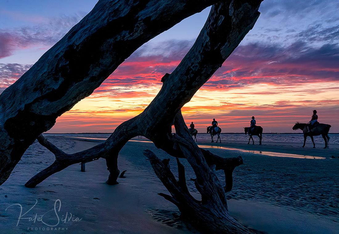 Jekyll Island Sunset Driftwood Beach and Horses.jpg