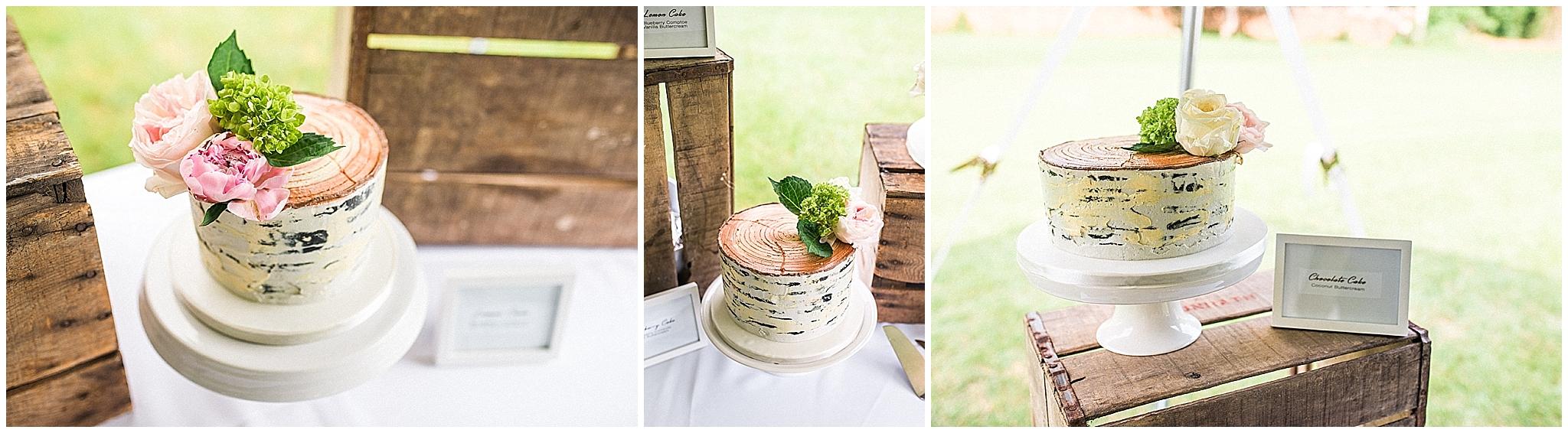 Wedding_Asheville_Photography_Junebug_Retro_Resort_14.jpg