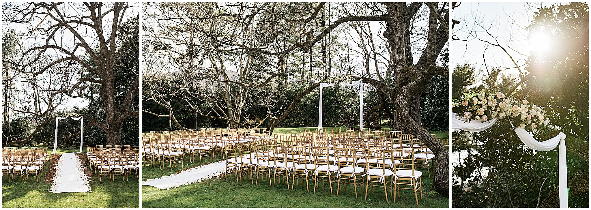 Wedding_Photographers_Asheville_Mountain_Magnolia_Inn_0013.jpg