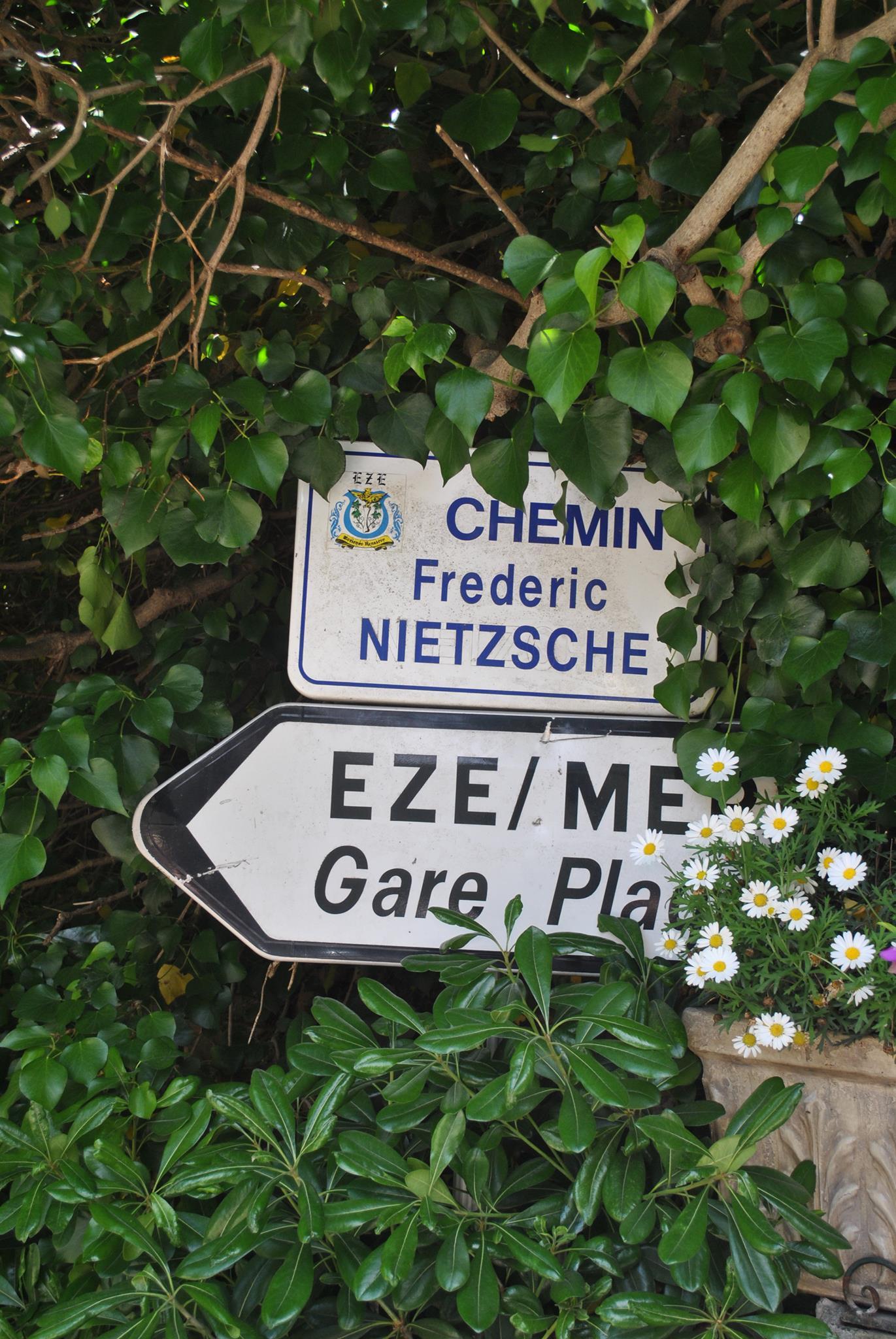 Le Chemin Nietzsche - Photograph by Sophia Di Vitto