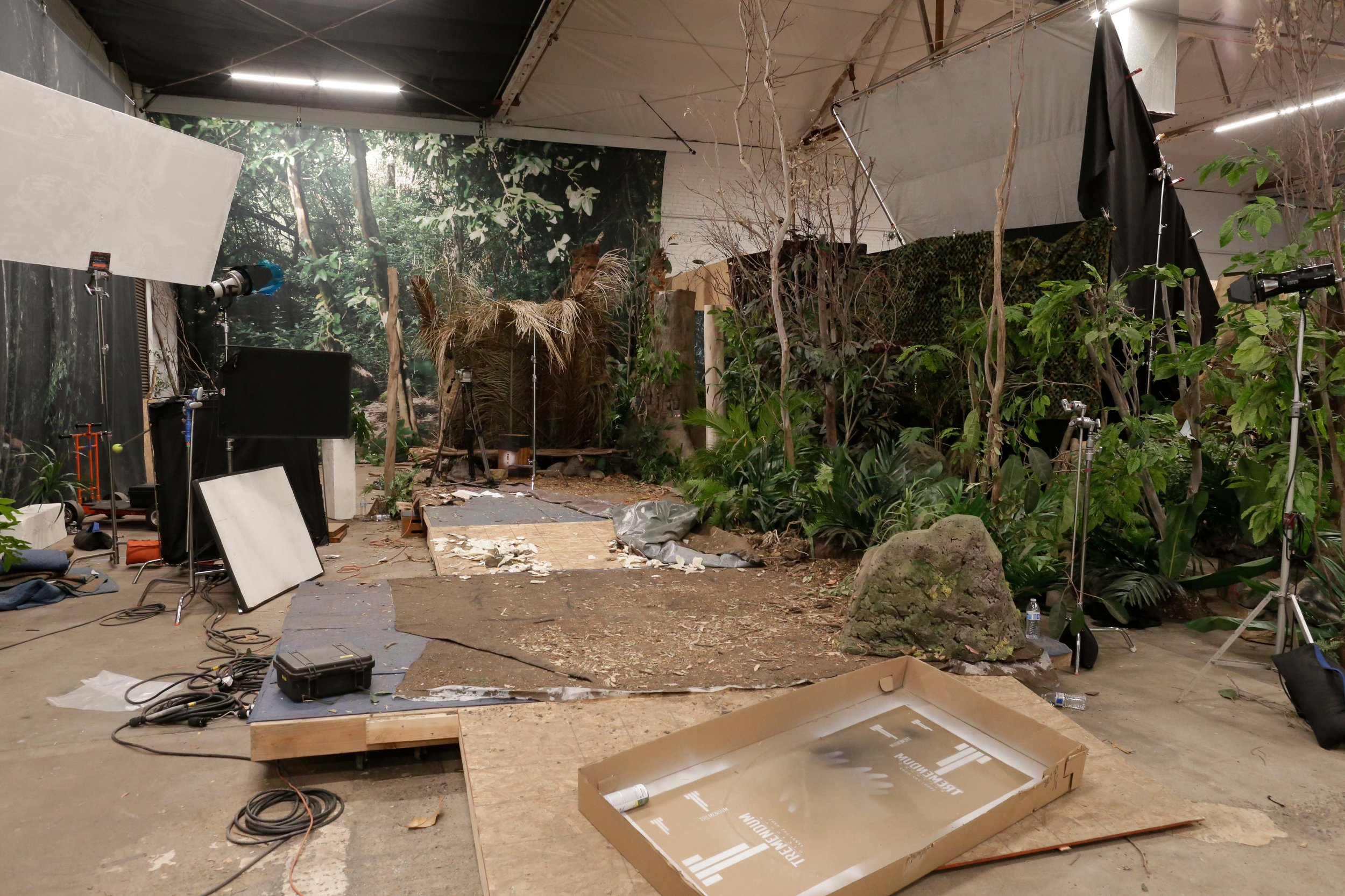 Wide, brightly lit view of our studio jungle with all its parts. Aka, how you should never see our studio jungle.