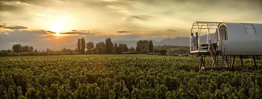 Mendoza wine region Argentina