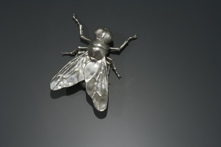 wynnefly (2).jpg