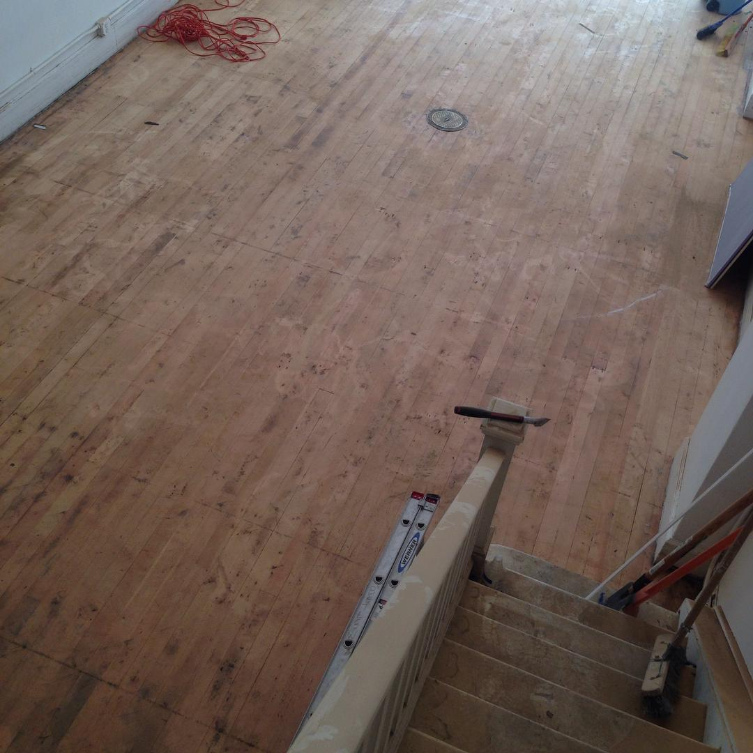 Sweet floor shot from the other day! Linoleum be gone!