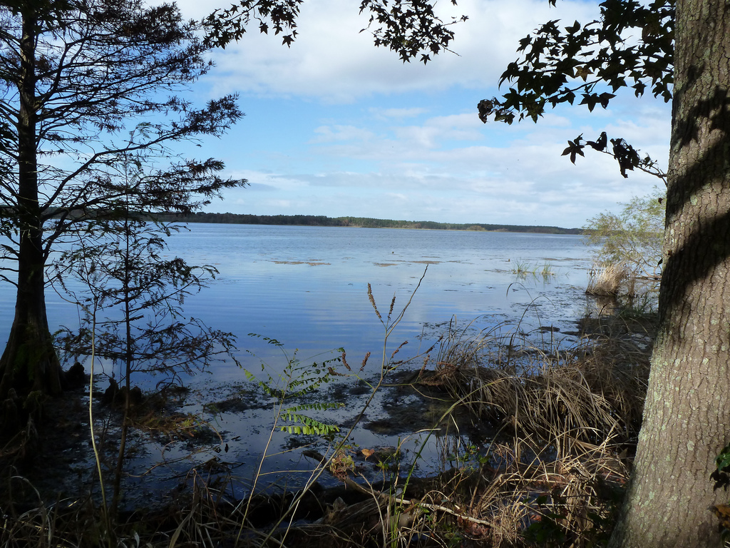 How much can the lake take? – Human Impact