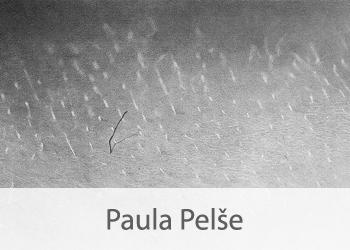 Paula-Pelse.jpg